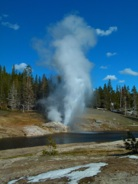 Riverside Geyser on Firehole River